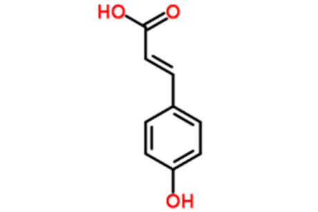 P-Hydroxycinnamic-Acid-Supplier.png